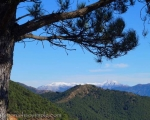 View from Sierra Bermeja across to snow capped peaks of Sierra de Las Nieves