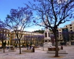 Plaza de La Merced, Málaga and the beautiful jacaranda trees