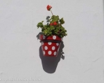Different coloured flower pots and geraniums galore in the old town of Estepona. Spanish So Simple Courses in Estepona, Marbella and Online
